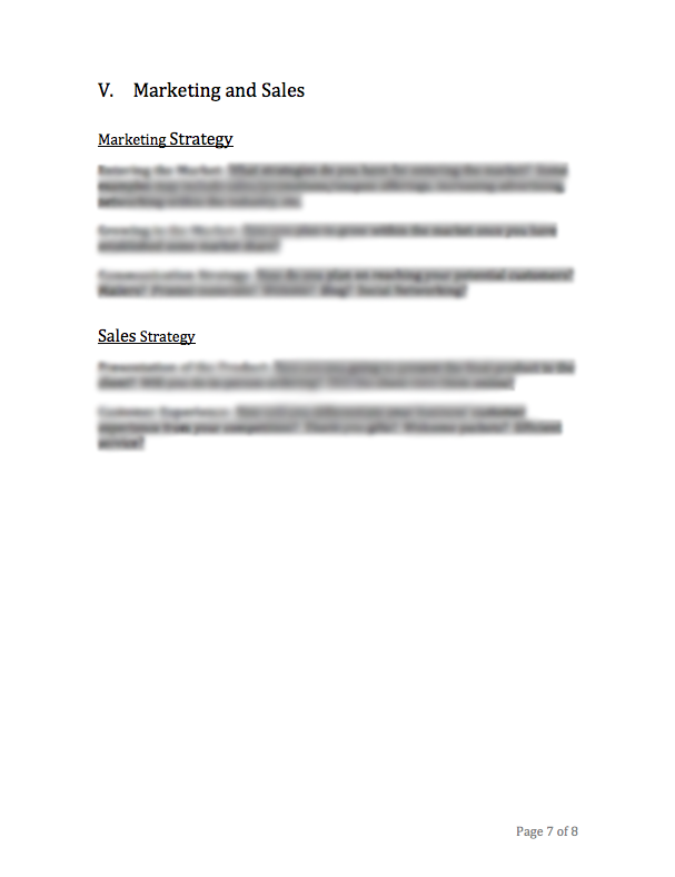 Photography Business Plan Template – Photography Business Plan